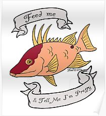 Hogfish diva Poster