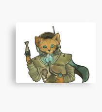 Space Pirate Fox Canvas Print