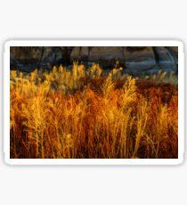 Flaming Grass Sticker