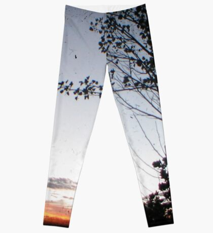 New England Sunset Through The Viewfinder (TTV) Leggings