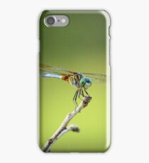 Odonata iPhone Case/Skin