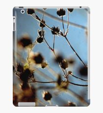 Cool Breeze - TTV iPad Case/Skin