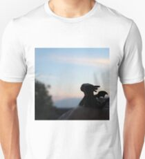 Tiny Toothless watching the sunset. Unisex T-Shirt