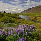 A Peaceful Valley by Sue  Cullumber