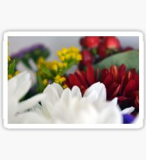 Macro on colorful flower petals. Sticker