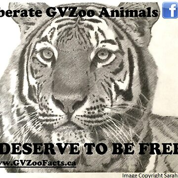 Liberate GVZoo Animals Tiger by sarahwfox