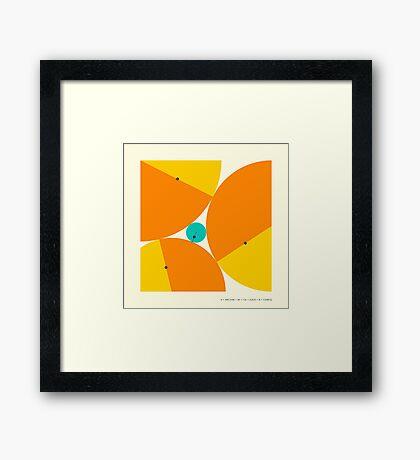 'X Marks the Spot': DESCARTES THEOREM Framed Print