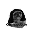 Oh, hi Doggie by raymondturbo