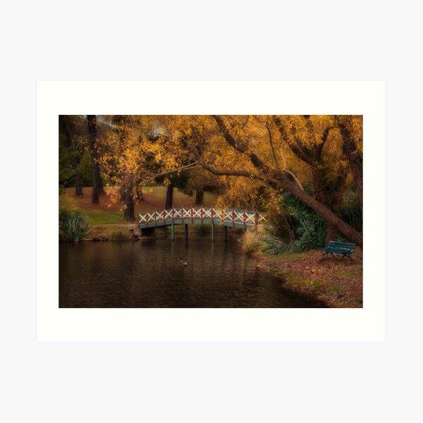 Lake Daylesford, Victoria Art Print