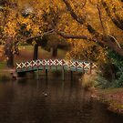 Lake Daylesford, Victoria by Margaret Metcalfe