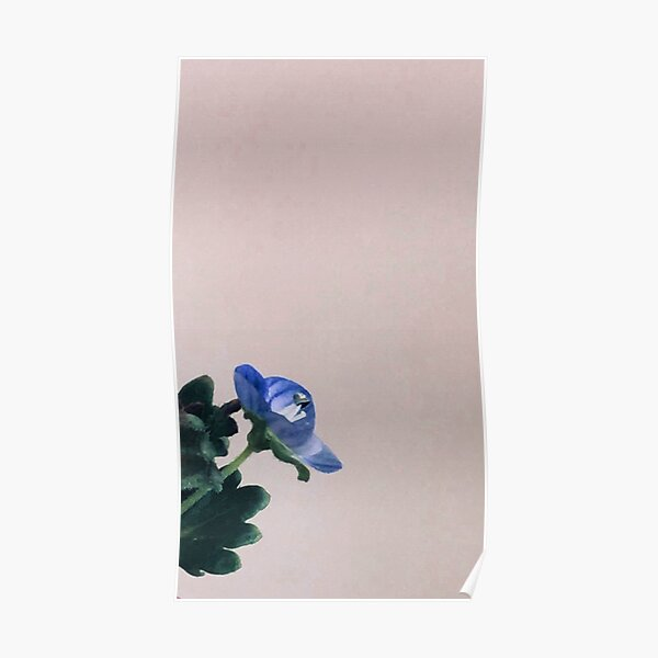 Small blue flower with beige background  Poster