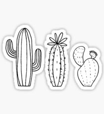 Cactus Trio Sticker