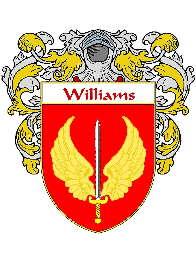 Williams Coat of Arms / Williams Family Crest by William Martin