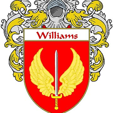 Williams Coat of Arms / Williams Family Crest by IrishArms