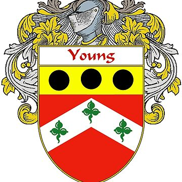 Young Coat of Arms / Young Family Crest by IrishArms