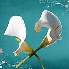 Calla Lilies  by Irene  Burdell