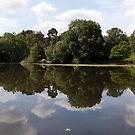 Keston Ponds Panorama  by John Gaffen