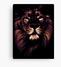 colored lion, indian lion Canvas Print