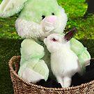 Rabbit kissing Bunny by Dagoth