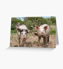 Bacon&Sausage  Greeting Card