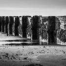 Groyne by John Dunbar