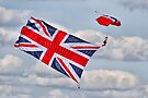 Flying The Flag 2 - The Red Devils - Duxford 2014 by Colin  Williams Photography