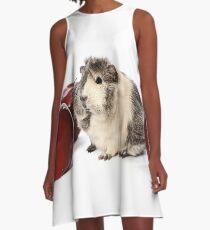 Guinea Pig Love Apples A-Line Dress