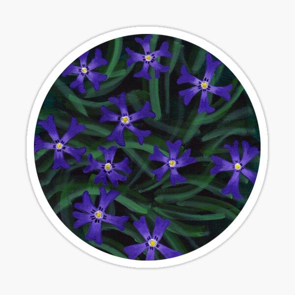 Phlox - cottage garden flowers Sticker