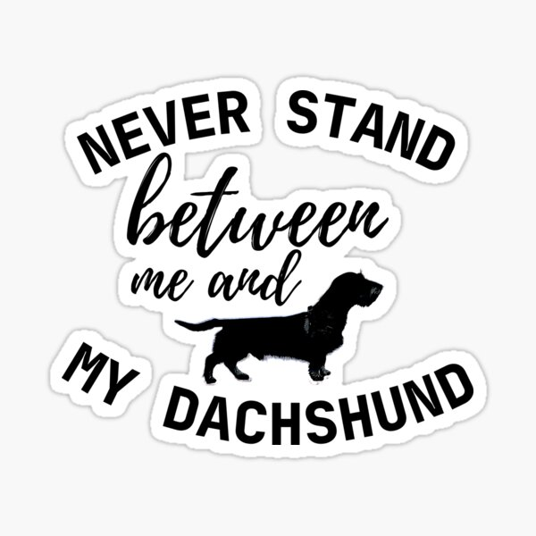 Never stand between me and my Dachshund - Print Sticker