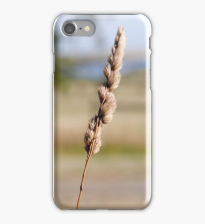 Beauty Is Everywhere In Life  iPhone Case/Skin