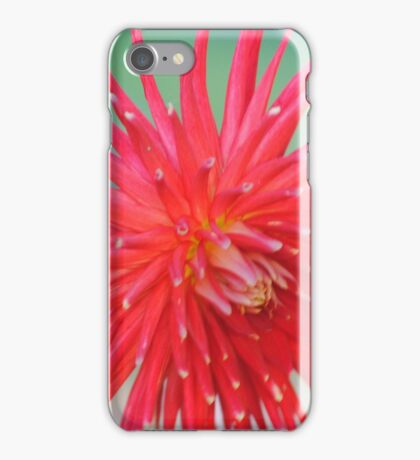 The Perfect Capture Of A Flower  iPhone Case/Skin