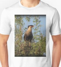 Crested Caracara, Marana, AZ T-Shirt