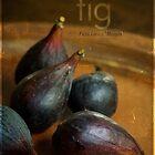 Fig by Lynn Starner
