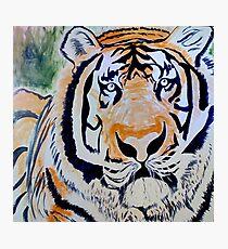 Tiger Quest Photographic Print