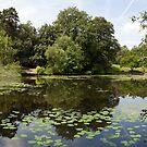 Keston Ponds Panorama II by John Gaffen