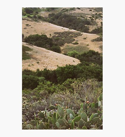 Warm Hills Photographic Print