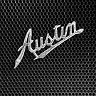 Austin by Michael Howard