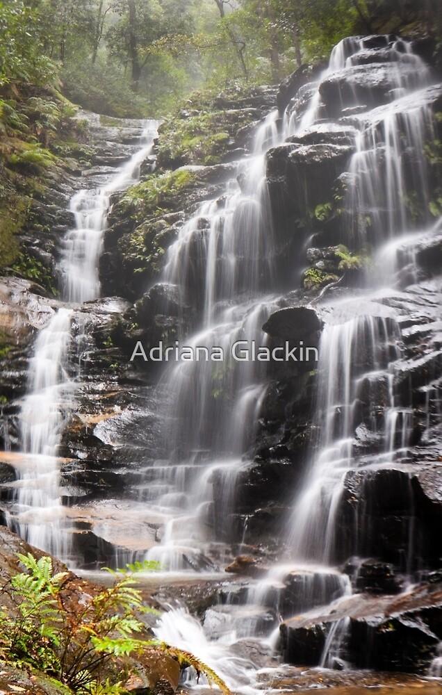 Sylvia Falls, Blue Mountains by Adriana Glackin