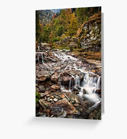 ~ the mountain stream ~ Greeting Card