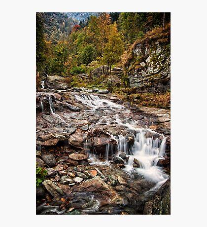 ~ the mountain stream ~ Photographic Print