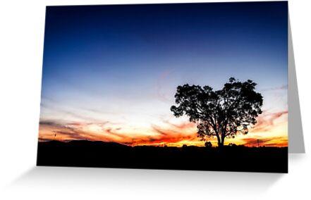 ~ the heart tree ~ by Adriana Glackin