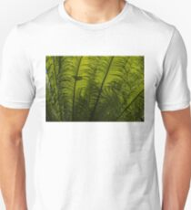 Tropical Green Rhythms - Feathery Fern Fronds - Horizontal View Upwards Right T-Shirt
