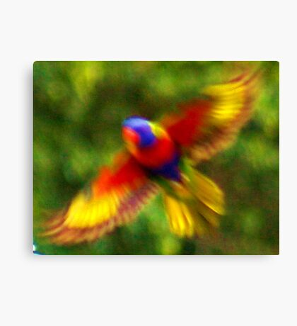 Impresionist Parrots in Sydney Canvas Print
