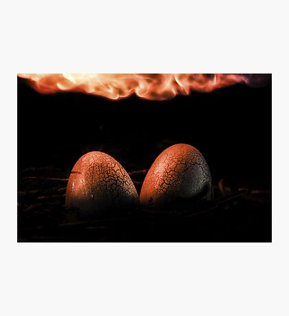 Incubation Photographic Print