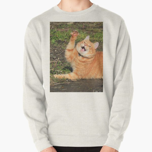 Ginger cat playing Pullover Sweatshirt