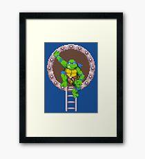 TURTLES IN TIME - LEONARDO  Framed Print