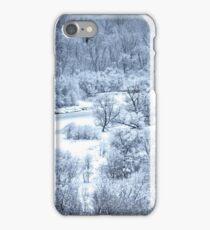 Narnia Too iPhone Case/Skin