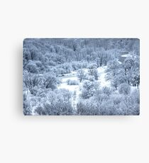 Narnia Too Canvas Print
