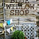 Blue Willow Shop, Door County Wisconsin by laxwings
