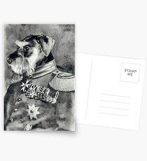 Wolfgang Amadeus von Panzerschnauz Postcards